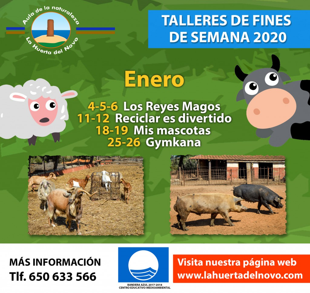 Enero-2020-Talleres-WEB